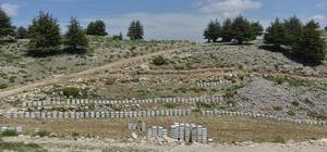 Mersin'de bal ormanları arıcılarla buluştu