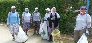 Burhaniye'de kent temizliğine kadın eli değdi