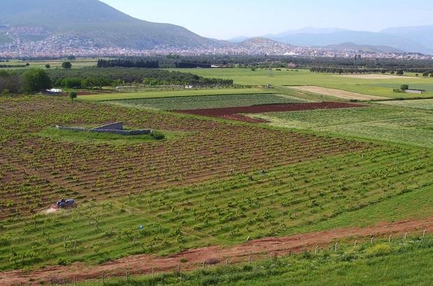 Milas'ta 16 bin 410 dekar tarım arazisi suya kavuşacak