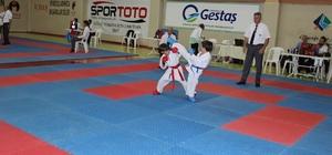 15 Temmuz Şehitleri ve Gazileri Anma İller Arası Karate Şampiyonası yapıldı