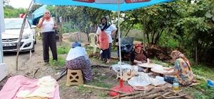 Fatsa'da fındık sezonu hazırlıkları