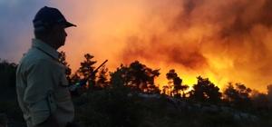 Uşak'ta bu yıl yangınlarda 1,1 hektar orman kül oldu