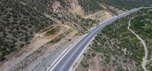 Kastamonu ve Sinop'ta karayolları ağaçlandırıldı