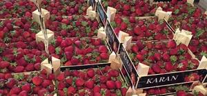 Bolluk yaz meyvelerini ucuzlattı