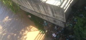 Kanalda mahsur kalan köpek kurtarıldı