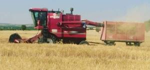 Kütahya'nın verimli topraklarında bereketli hasat