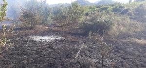 Kastamonu'da çıkan anız yangını, ormana sıçramadan söndürüldü