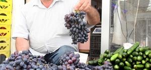 Kilis'te Horoz Karası üzüm piyasaya çıktı