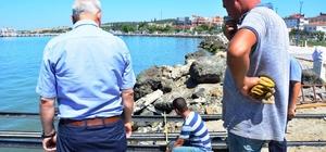 Lapseki'de amatör balıkçılar için iskele yapılıyor