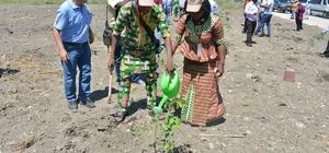 Mersin'de Afrikalı ormancılara ormancılık eğitimi verildi