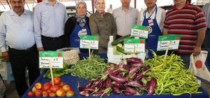 Kocasinan'da yüzde 100 organik pazar açılıyor