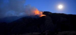 Vali Azizoğlu, yangın yerinde incelemelerde bulundu