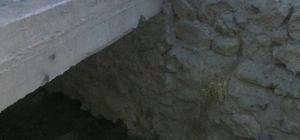 Açıktan akan kanalizasyondan dolayı mahalleyi sinek bastı iddiası