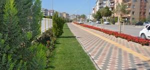 Torbalı'ya dört yürüyüş yolu