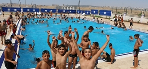 Şanlıurfa'da bin 500 genç belediyenin kurslarında yüzme öğrendi