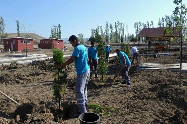 Sungurlu'da mesire alanları ağaçlandırılıyor