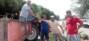 Başkan Gençer Altınova sahil yolundaki kavşağın ışıklandırılmasının talimatını verdi