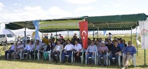 Rulo Balya Silajı için Aziziye'de 'Tarla Günü' düzenlendi