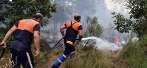 Orman yangınına ilk müdahaleyi Pendik Belediyesi yaptı