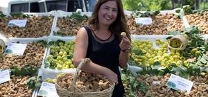 Sezonun ilk kuru inciri kilosu 200 TL'den alındı