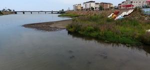 Elekçi ve Bolaman Irmaklarına tahkimat başlıyor