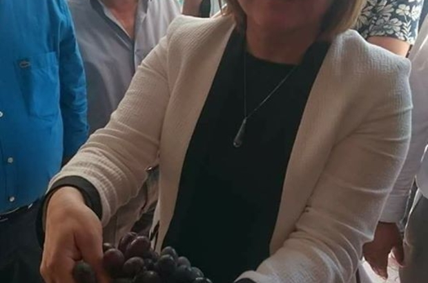 Fatma Şahin'e kara üzüm ikramı