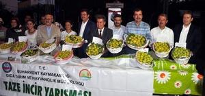 Buharkent'tin dünyaca ünlü taze inciri festivalle tanıtıldı