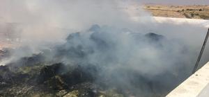 Midyat'ta hayvan çiftliğinde yangın