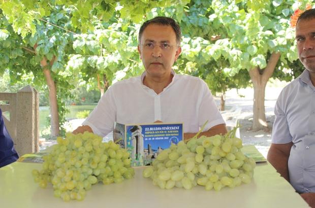 Tripolis Antik Kent'te çekirdeksiz üzüm festivali yapılacak