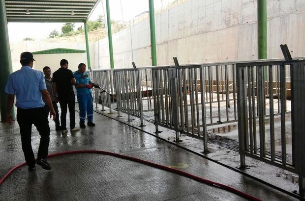 İzmit'te kurbanlıklar pazara iniyor