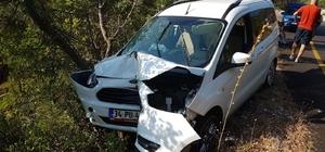 Arıdan korkan  sürücü kaza yaptı