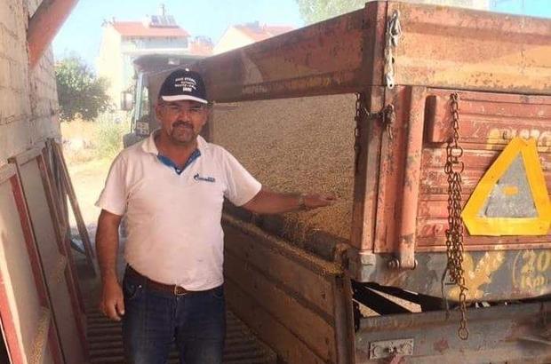 Sertfikalı buğday tohumu eken çiftçinin rekor hasadı