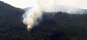 Fethiye'de 10 dönüm ormanlık alan zarar gördü