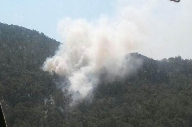 Bozdoğan'da 10 dönüm tarım arazisi yangında zarar gördü
