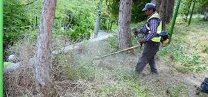 Seyitgazi Belediyesi bayrama hazırlanıyor