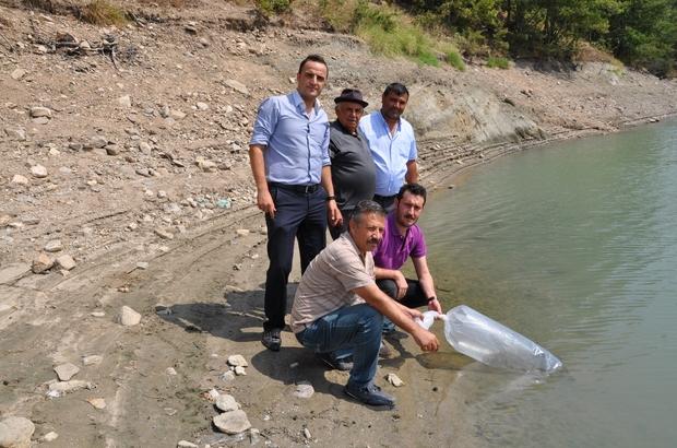 Simav'da göletlere 27 bin yavru balık bırakıldı