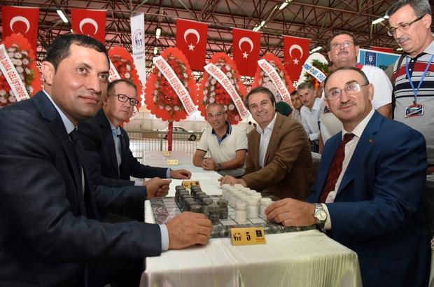 Mustafakemalpaşa'da dama heyecanı