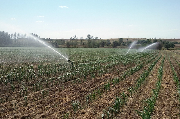 Çiftçi ikinci mahsul sulama mesaisinde