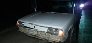 Otomobil domuza çarptı