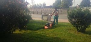 İzmit'in mahallelerinde tırpanlama çalışmaları başladı