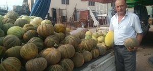 Hisarcık'ta yerli kavun tezgaha indi