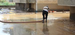 Arhavi'de etkili yağış