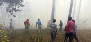 Kars'ta orman yangını