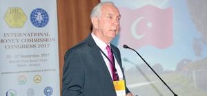 Uluslararası Bal Komisyonu Kongresi