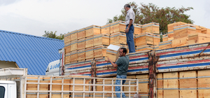 """Tunceli'de arıcılar piyasanın """"bal"""" talebine yetişemiyor"""