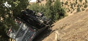 Uçuruma yuvarlanan kamyondaki üç kişiyi ağaç kurtardı