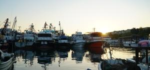 Balıkçıların istavrit yolculuğu