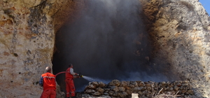 Mersin'de 130 keçi yangında telef oldu