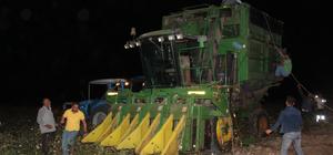 Pamuk hasat makinesinin altında kalan 2 kişi öldü