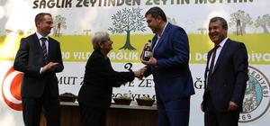Anıt ağacın zeytinlerinin yağı 50 bin liraya satıldı
